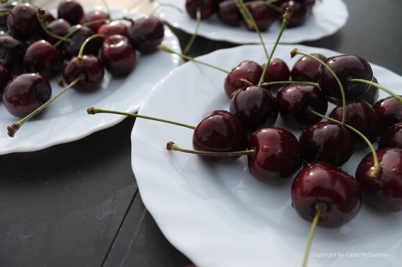 Healthy cherries